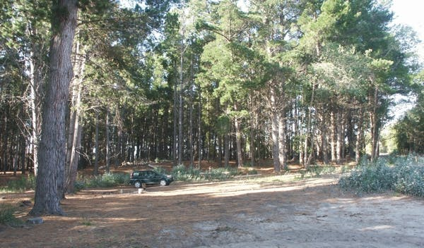Tasmania Blackmans Lagoon Camping Area