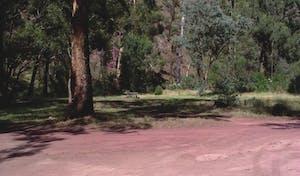 Muttonwood Camp