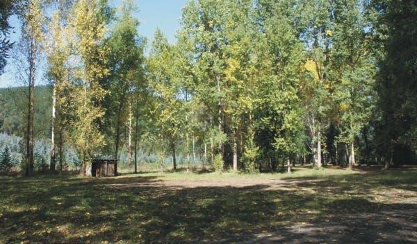 Loch Valley Campground