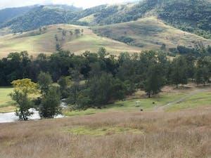 NSW Bretti Reserve