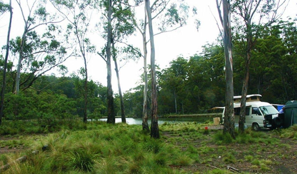 TAS Scamander Reserve