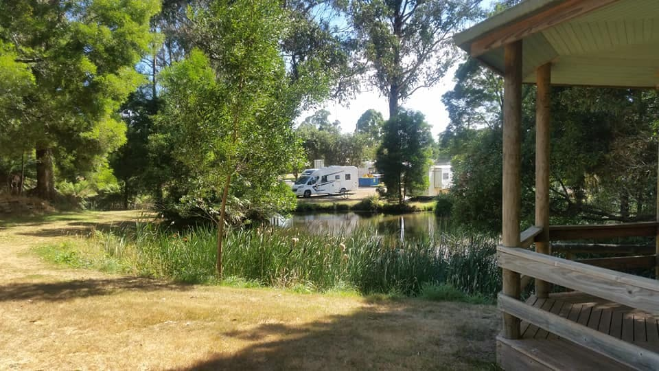 Scottsdale Northeast Park is one example of a free camping site in Tasmania