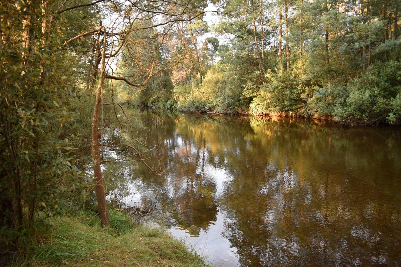 Branxholm River Walk
