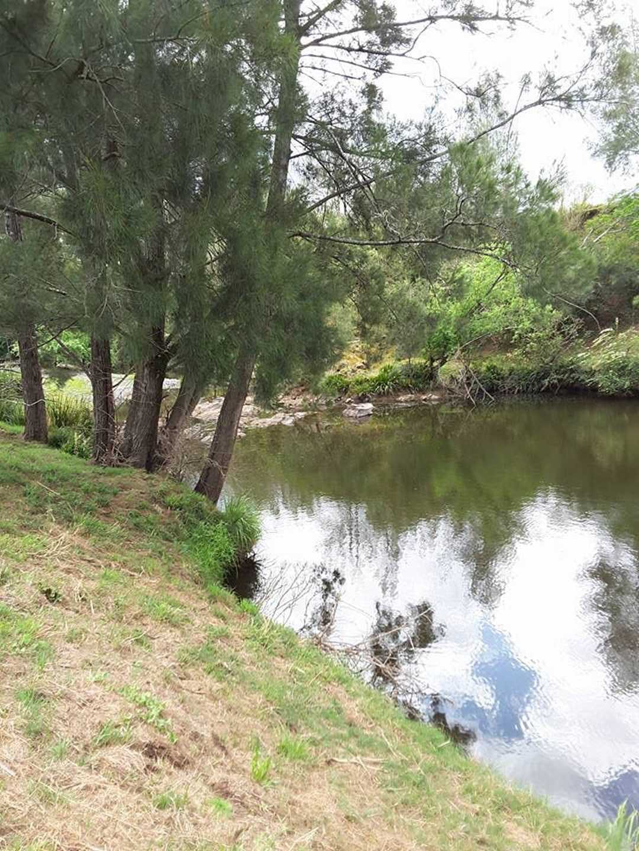 Dungog Shire - Creek