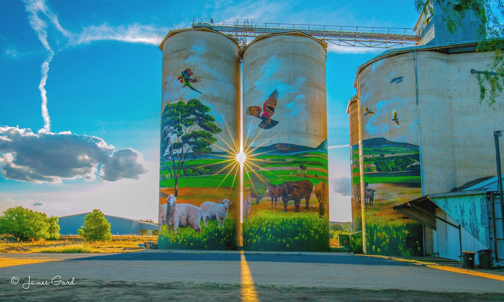 Grenfell Silos, New South Wales, Photo by James Gard - Artist Heesco