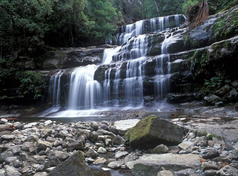 Liffey Falls Deloraine
