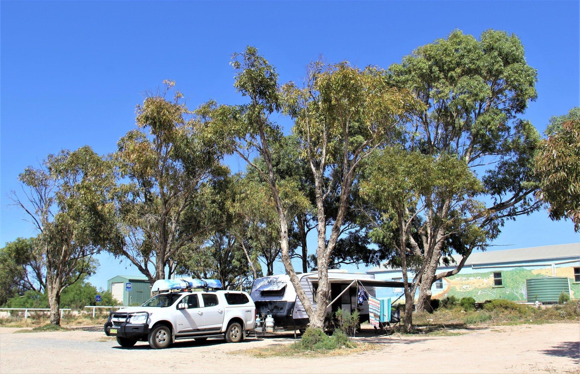 Haslam SA - Our camp