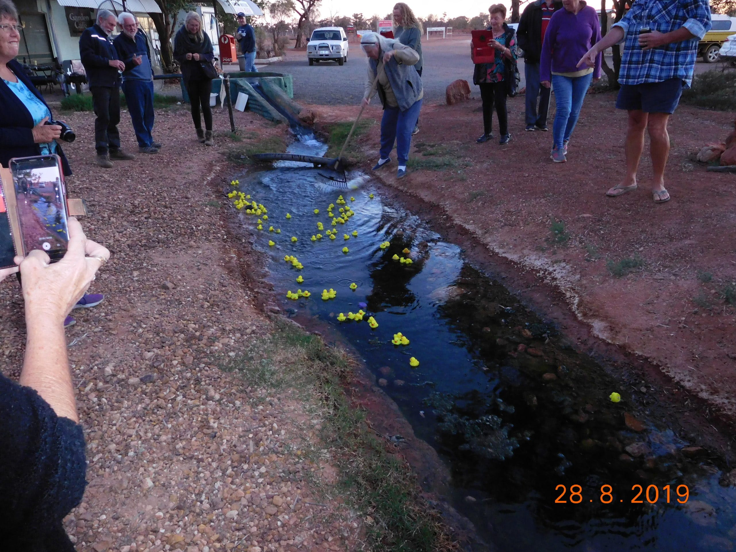 Dinner and Duck races