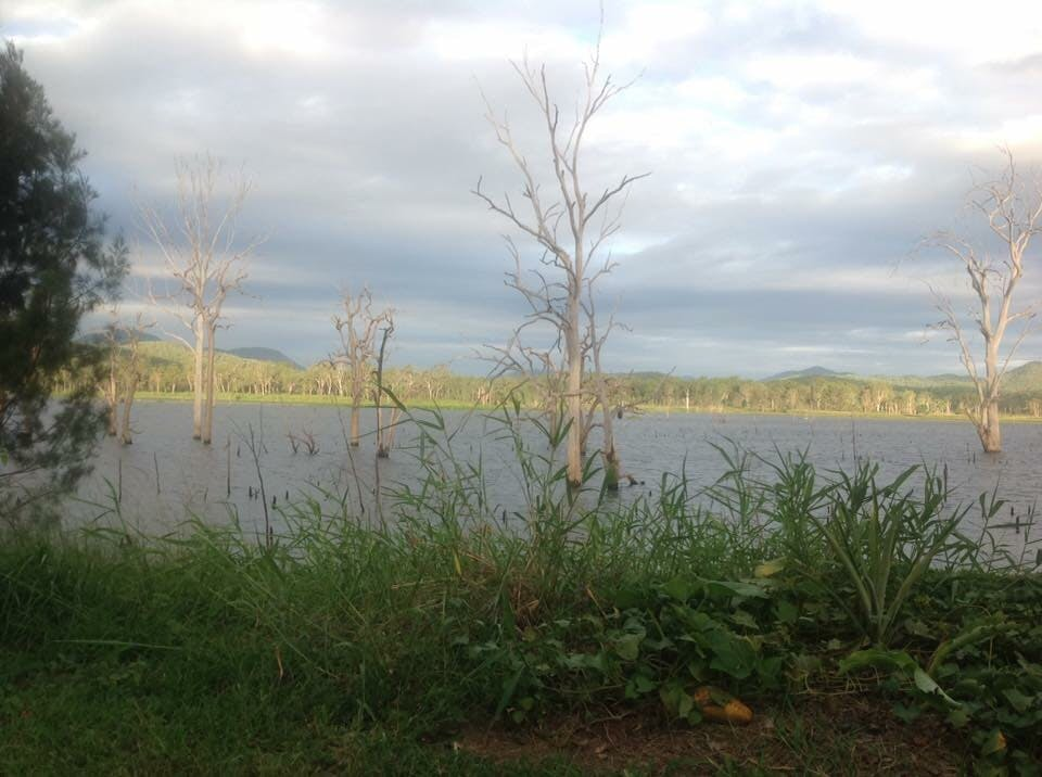 QLD Boynedale Bush Camp