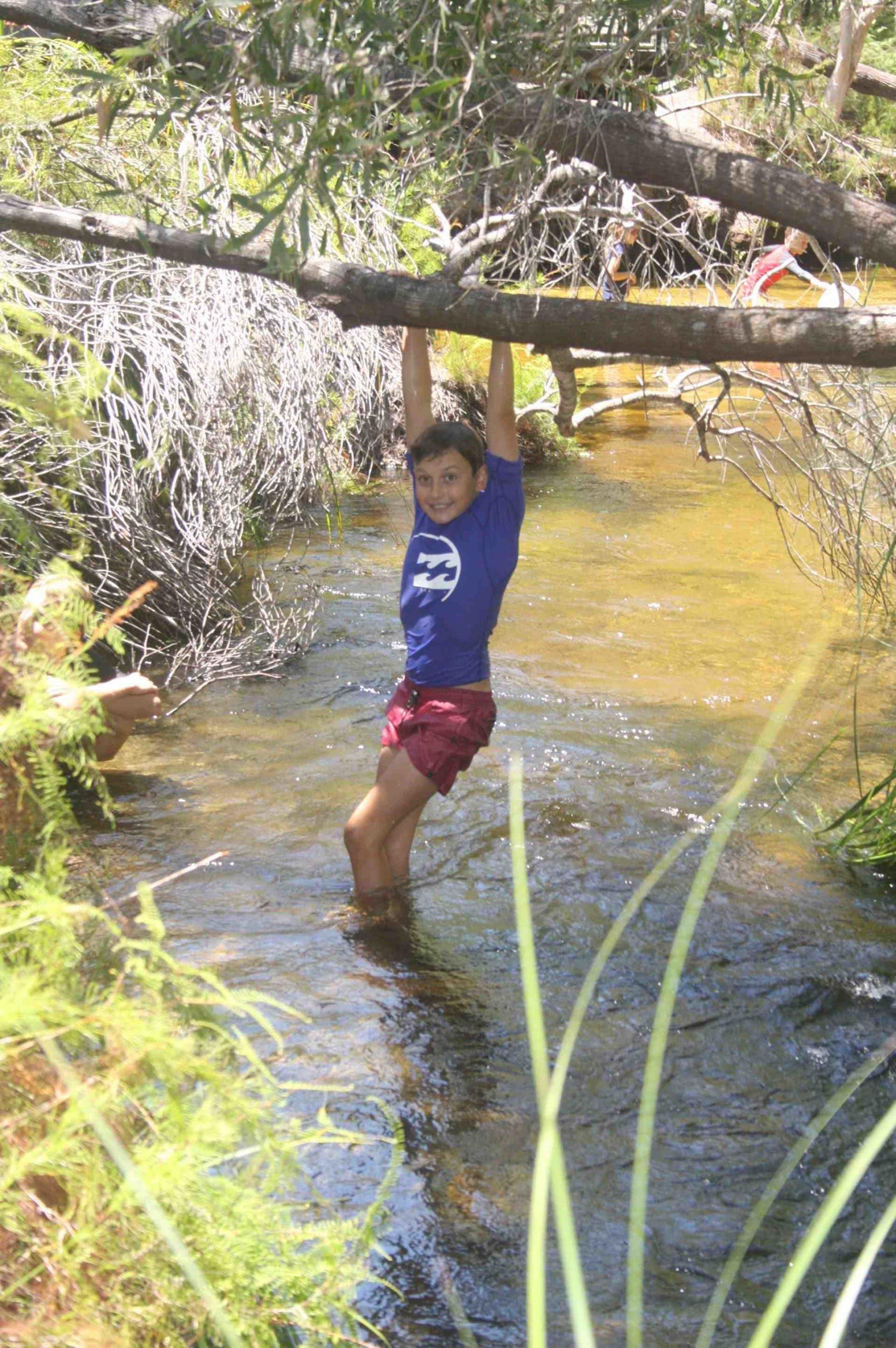 3. Seary's Creek