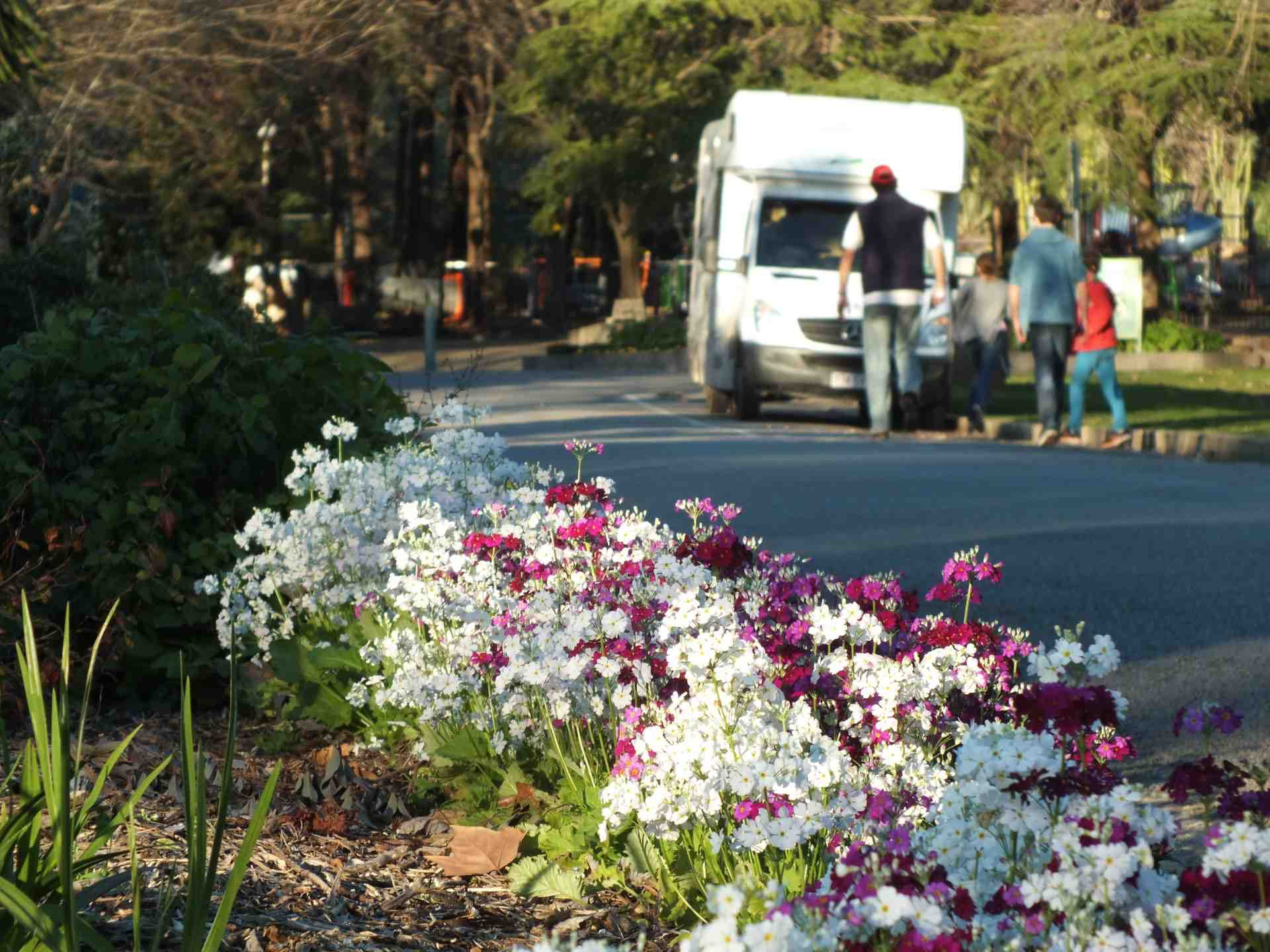 Wagga Botanic Gardens