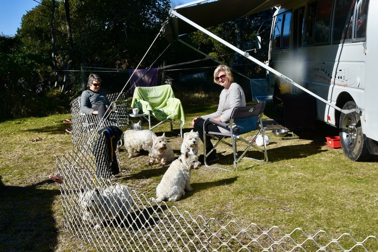 Lis Brown dog fencing when she camps