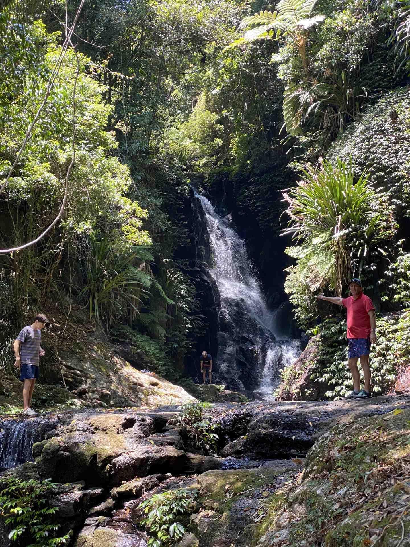 Lamington National Park - Box Log Falls