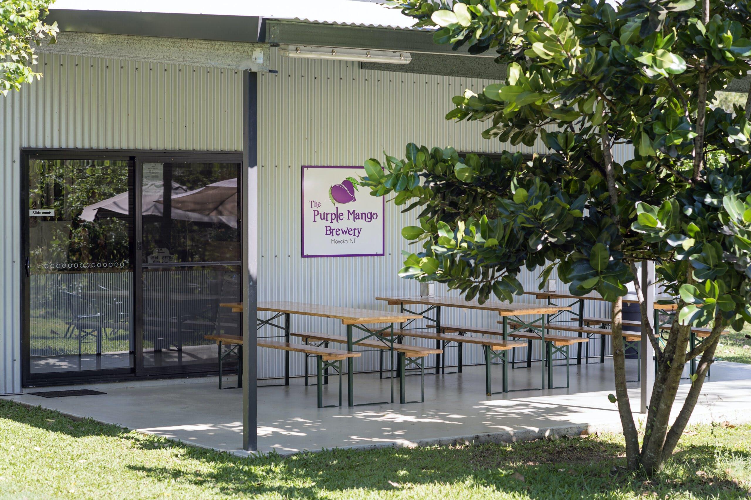 Purple Mango Camping and Brewery