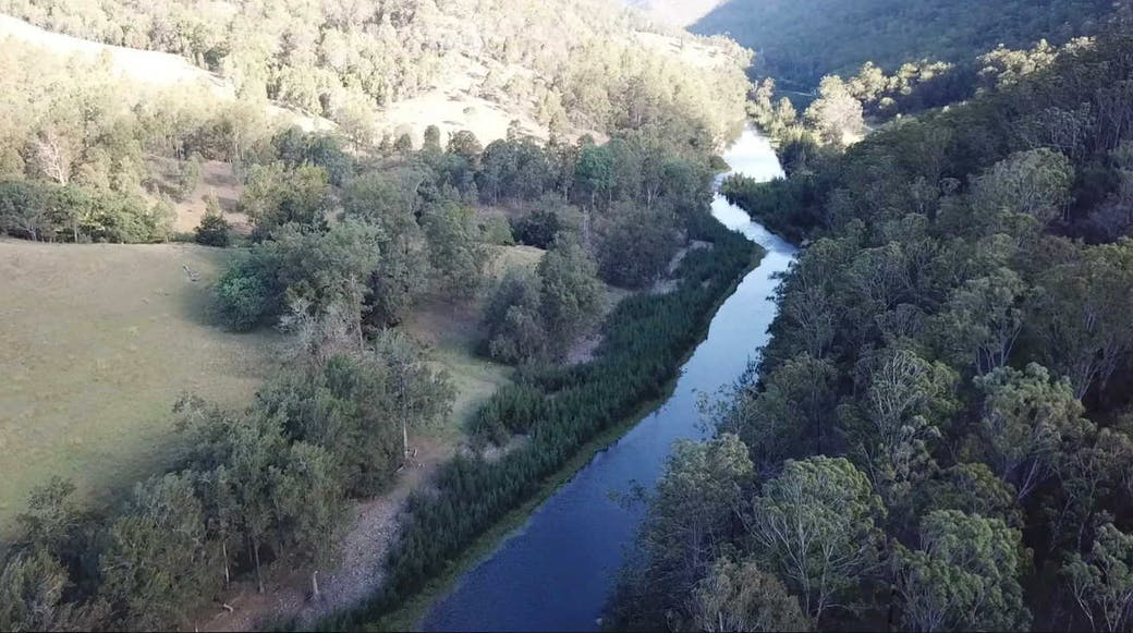 Timbarra Valley Camping