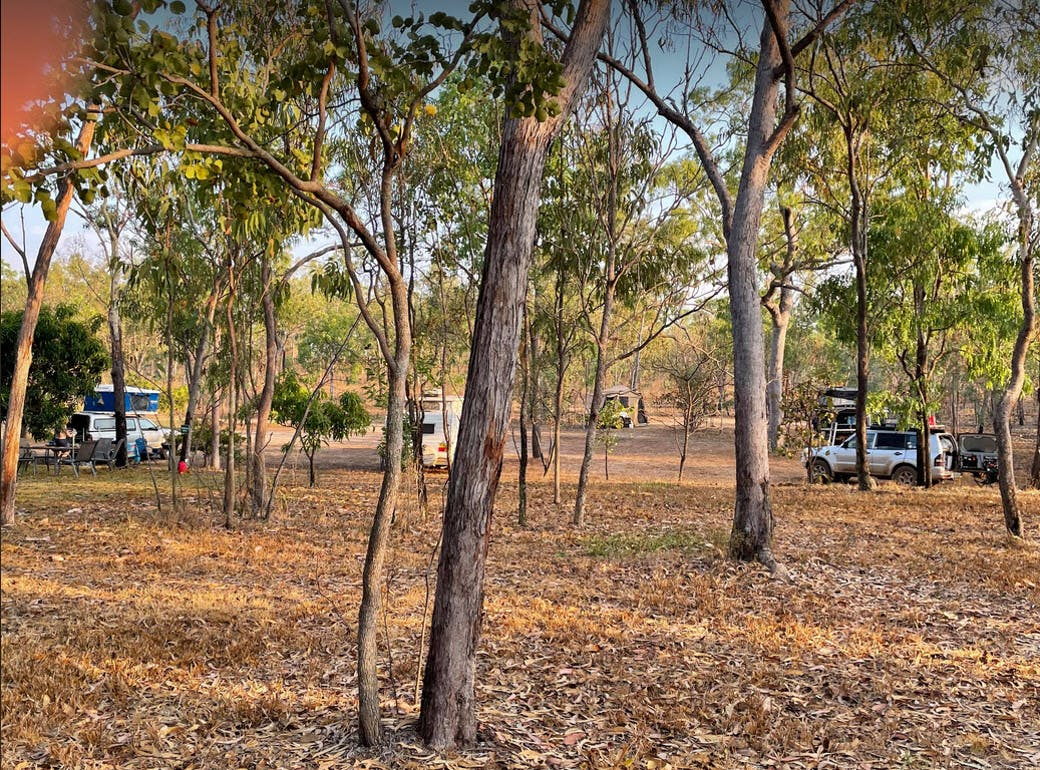 Purple Mango Cafe and Campground