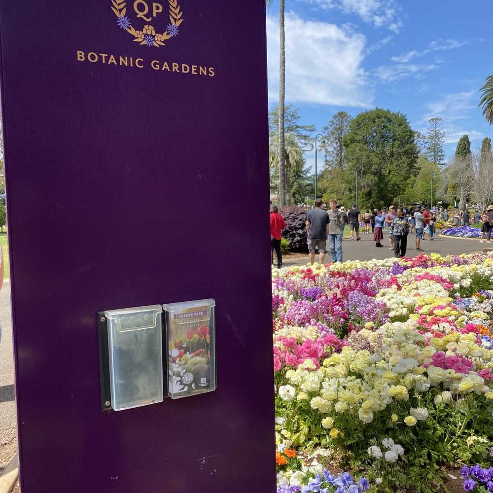 Toowoomba Carnival Of Flowers Queensland - 6760