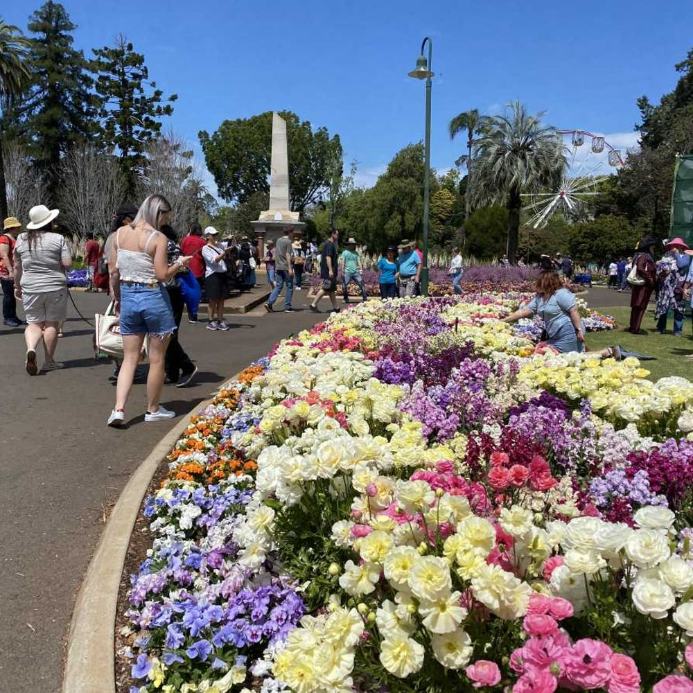 Toowoomba Carnival Of Flowers Queensland - 6763