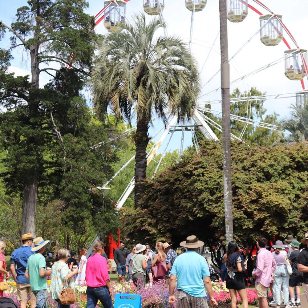 Toowoomba Carnival Of Flowers Queensland - 9002