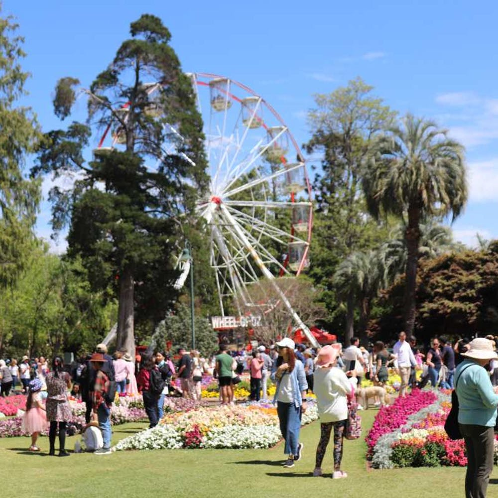 Toowoomba Carnival Of Flowers Queensland - 9010